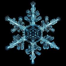 Natural Crystal Snowflake Macro