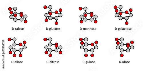 Fotografía  D-aldohexose sugars: allose, altrose, glucose, mannose, gulose