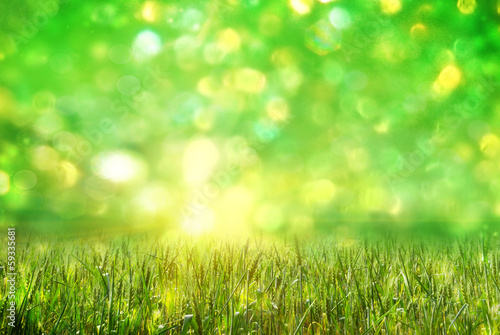 Photo sur Toile Herbe green ears of wheat on defocused light green background