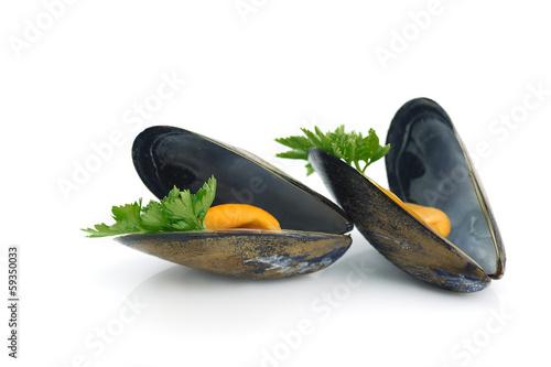 Fotografie, Obraz  gros plan sur deux moules cuites