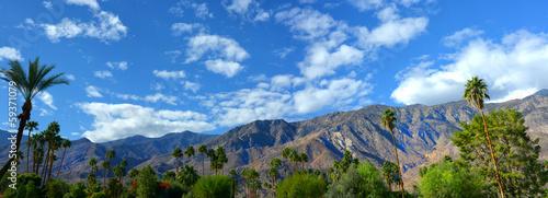 Tuinposter Palm boom Palm Springs Pano