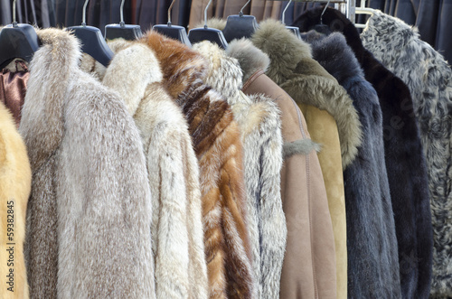 Fotografie, Tablou  Row of coats made of animal fur