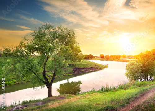 Canvas Prints Honey Evening on the river