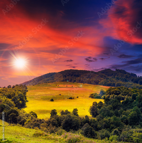 Tuinposter Crimson forest on a steep mountain slope