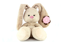 Brown Teddy Bunny With Rose No...