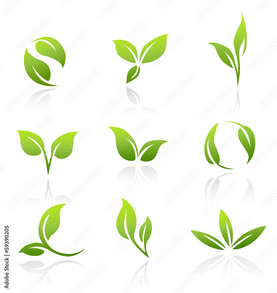 Fototapety, obrazy: Vector Icons - Green Leaves
