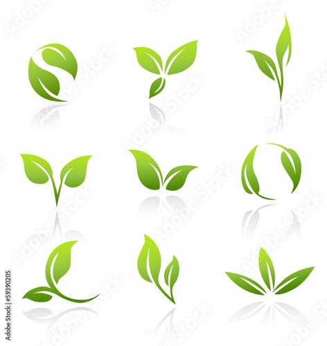 Obraz Vector Icons - Green Leaves - fototapety do salonu