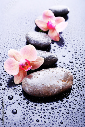 Naklejka na kafelki Composition with beautiful blooming orchid with water drops and