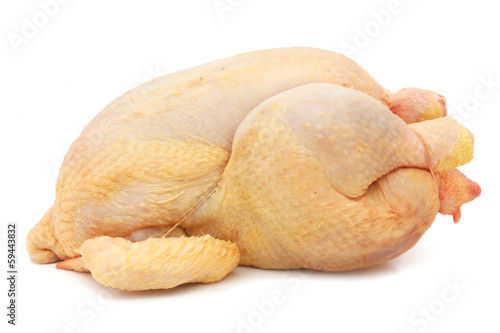 Fototapeta Fresh chicken - fresh hen