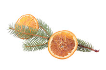Pine Branch With Dried Orange Slice Isolated
