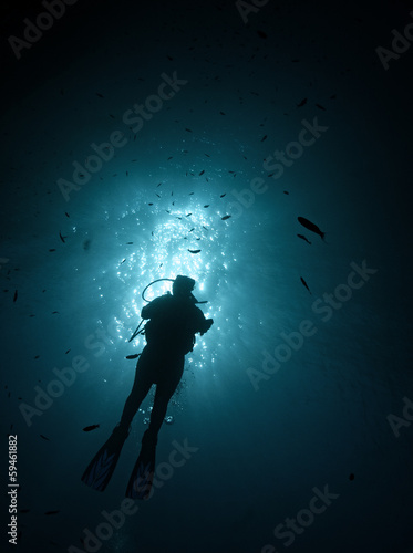 Diver in the sea Wall mural