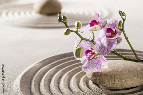 Acrylic Prints Stones in Sand pure wellness with zen orchids