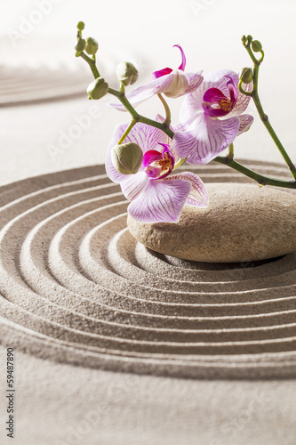estetyka-zen-z-piaskiem-i-kwiatem
