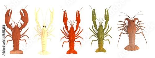 Photo  realistic 3d render of crustacean set