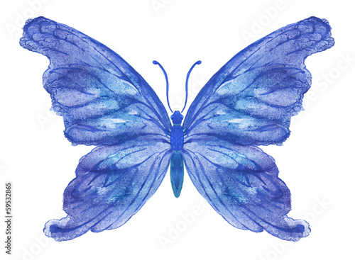 Fotografie, Obraz  Акварельная бабочка на белом. Вариант 3.