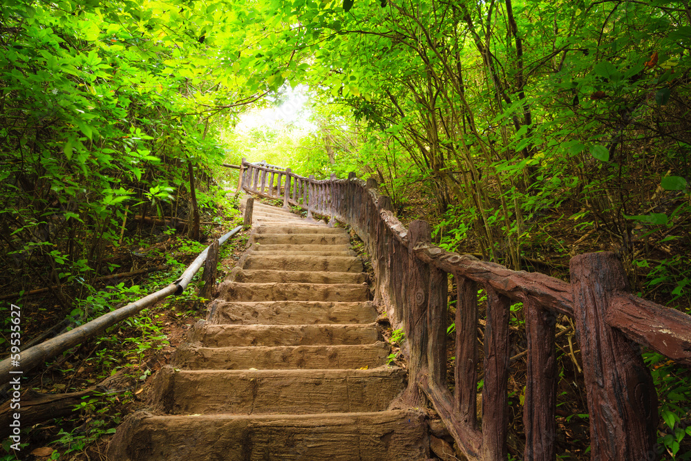Fototapeta Stairway to forest, Kanchanburi,Thailand