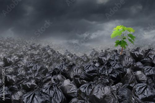 Environmental Hope Poster Mural XXL