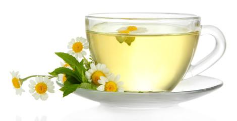 Fototapeta Do herbaciarni Cup of herbal tea with wild camomiles and mint, isolated