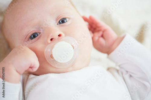 Fotografia, Obraz  sweet baby