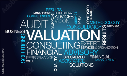Valuation consulting services expert finance word tag cloud Wallpaper Mural