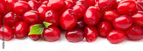 Fresh cornel berries isolated on white