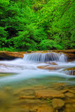 stream in the park with little waterfalls - 59719641