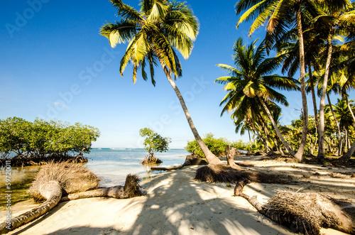 Staande foto Caraïben Karibik pur: karibischer Traumstrand