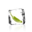 Chilischote im Eiswürfel