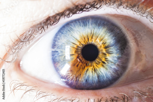 Canvas Prints Iris Macro Human Eye Multicolored