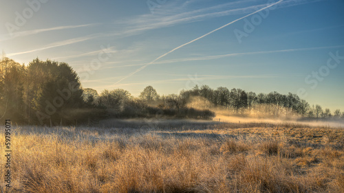 Wild meadow with morning mist
