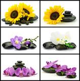 Fototapeta Kamienie - Kwiaty z kamieniami do spa