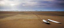 Surfboards Beach Landscape - S...