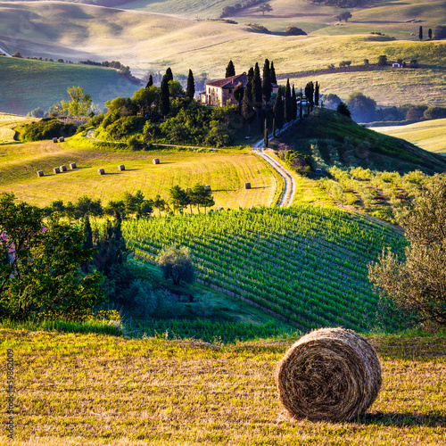 Fotobehang Meloen Tuscany, Italian Landscape