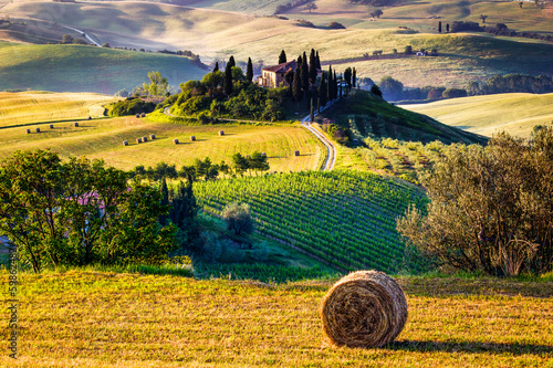 Canvas Prints Honey Tuscany, landscape