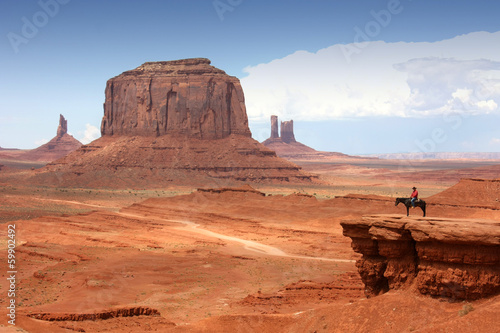 Poster de jardin Vache Monument Valley - USA