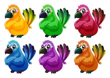 A Group Of Angry Birds