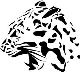 Fototapeta Zwierzęta Isolated black panter on white background - vector illustration