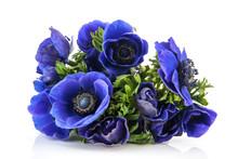 Bouquet Blue Anemones