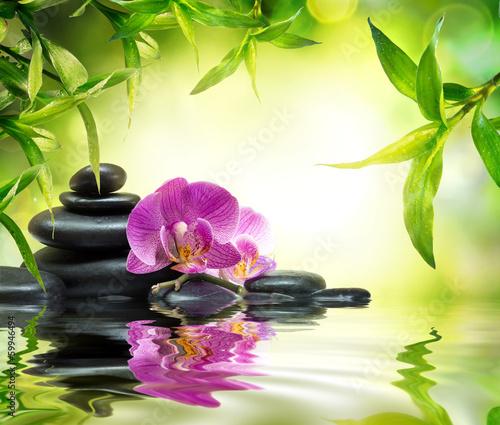 alternatywny-masaz-w-bambusowym-ogrodzie-na-wodzie