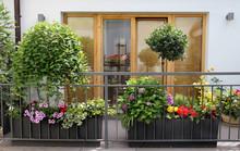 Beautiful Modern Terrace With ...