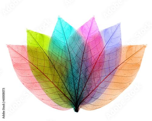 kolor-opuszcza-abstrakcjonistycznego-ksztalt-na-bialym-tle