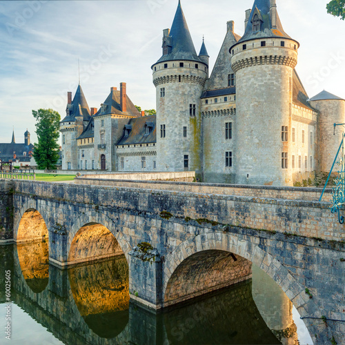 Foto op Plexiglas Kasteel The chateau of Sully-sur-Loire at sunset, France