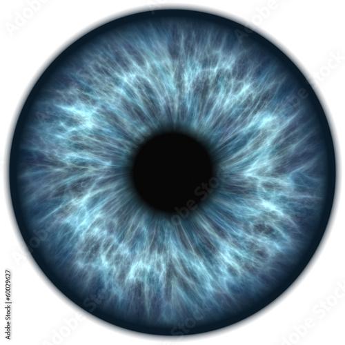 Obraz na plátně blaue iris