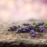 Fototapeta Lavender - flowers