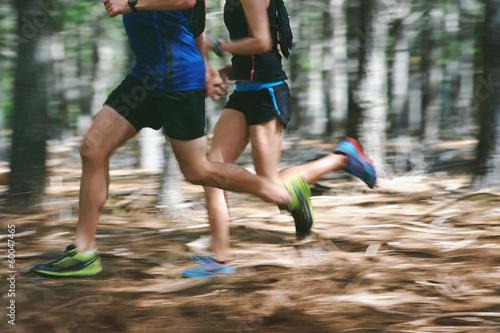 Obraz na plátně motion blur forest trail run