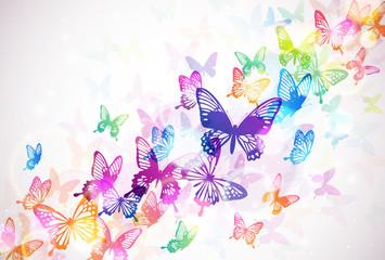 Fototapeta蝶々