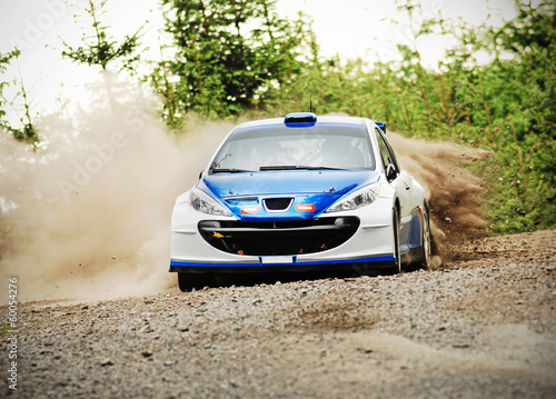 Rally car in action - Peugot 206 S2000