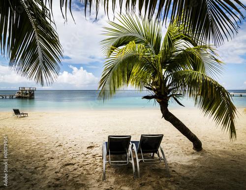 Foto-Kissen - Tropical paradise (von michalzak)
