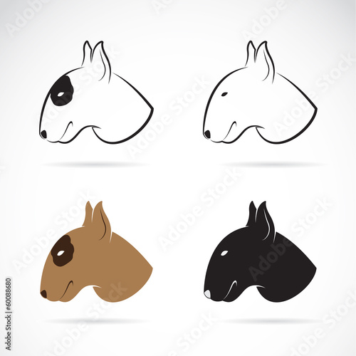 Canvas-taulu Vector image of bull terrier