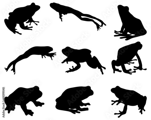 Fotografie, Obraz  Black silhouettes of  frog, vector